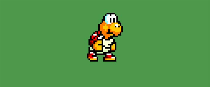This is a koopa troopa.